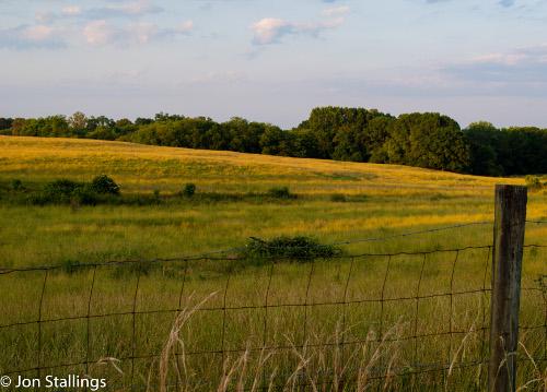 Outstanding Field
